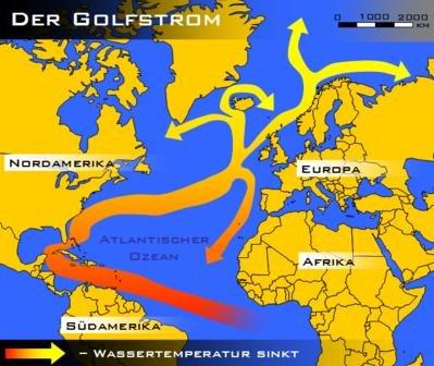 Greenpeace Interview zur Öl-Pest am Golf von Mexiko